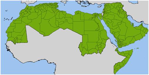 15- مرحلة التحرر العربي