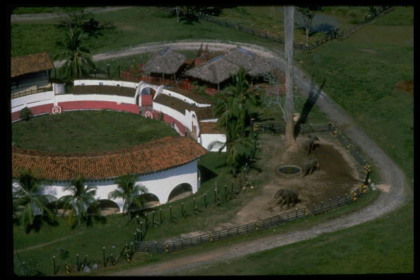 Aerial view of elephants & bldgs. on grounds of 530 hectare private Hacienda Napoles zoo of drug lord Pablo Escobar. ALONG MAGDALENA RIVE (Photo by Timothy Ross/The LIFE Images Collection/Getty Images)