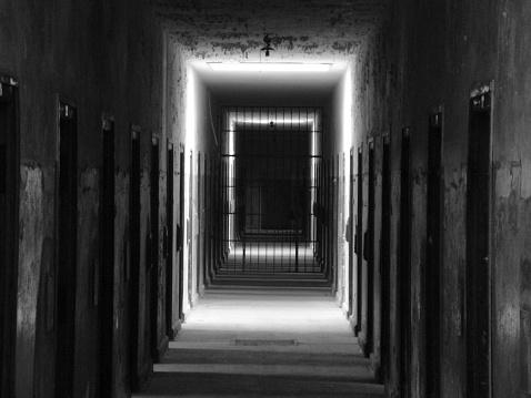 اليوم الوطني للسجين