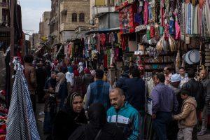 مبادرات طموحة لتبادل الخبرات تنطلق من مصر