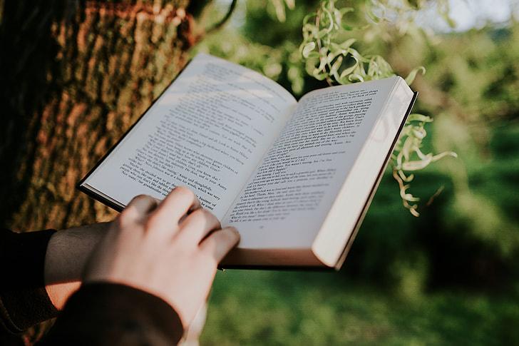 - التعلم - التعليم - كتب