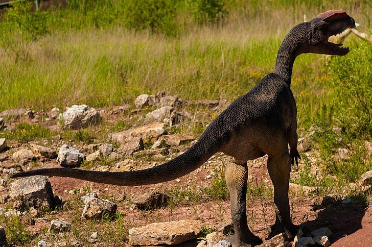 10 حقائق غير شائعة قد تغير مفهومك عن الديناصورات