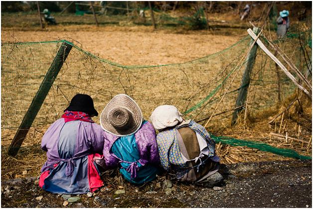 حكاية قرية في اليابان
