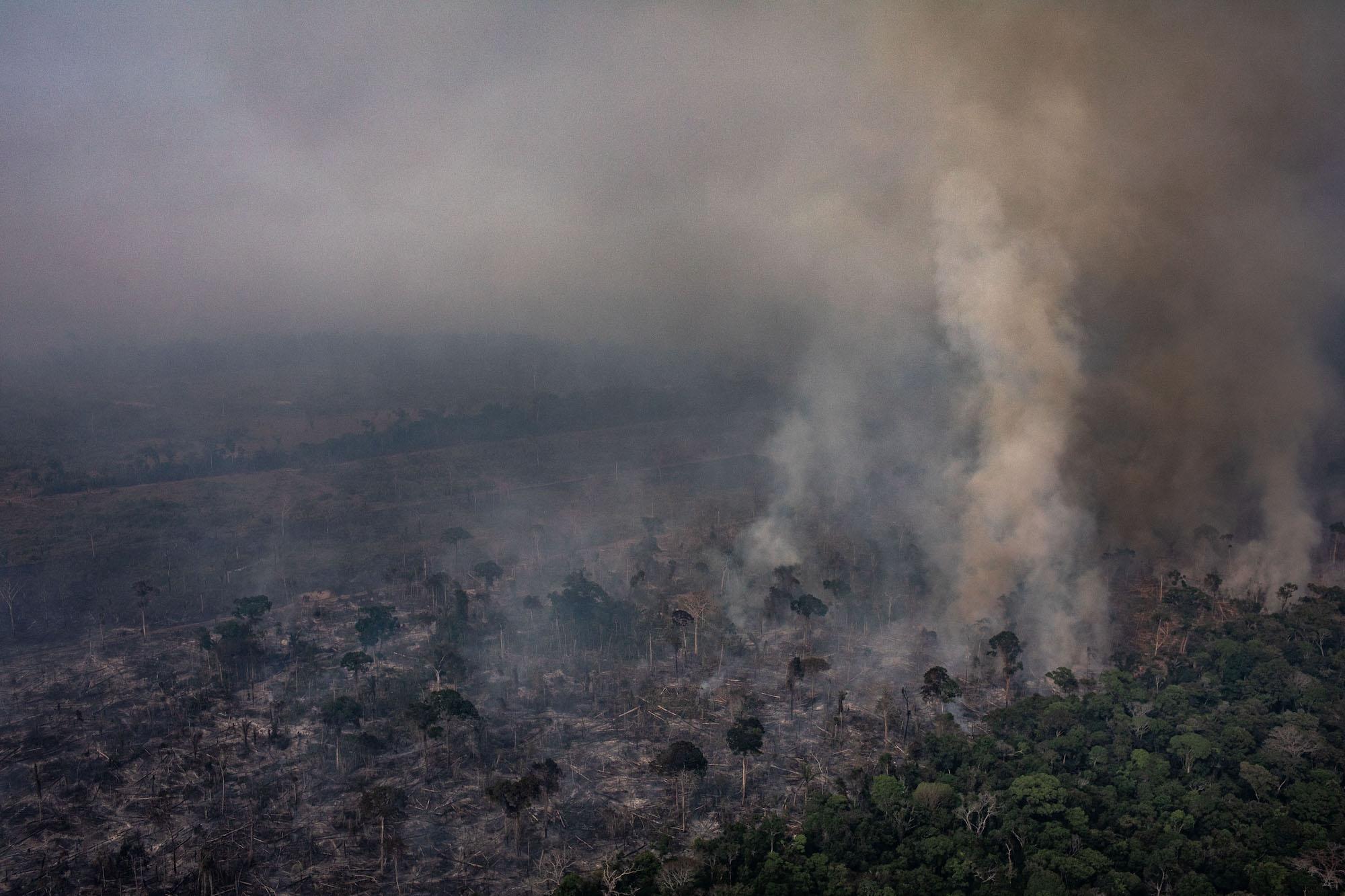 صورة. جوية من حرائق غابات الأمازون