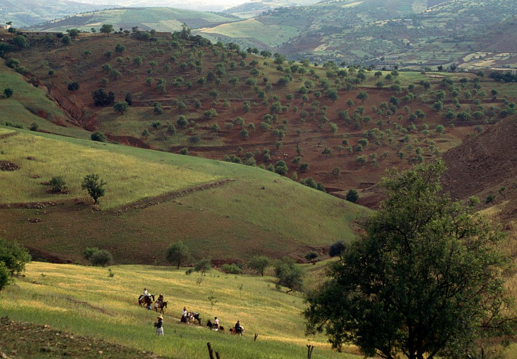 الريف المغربي