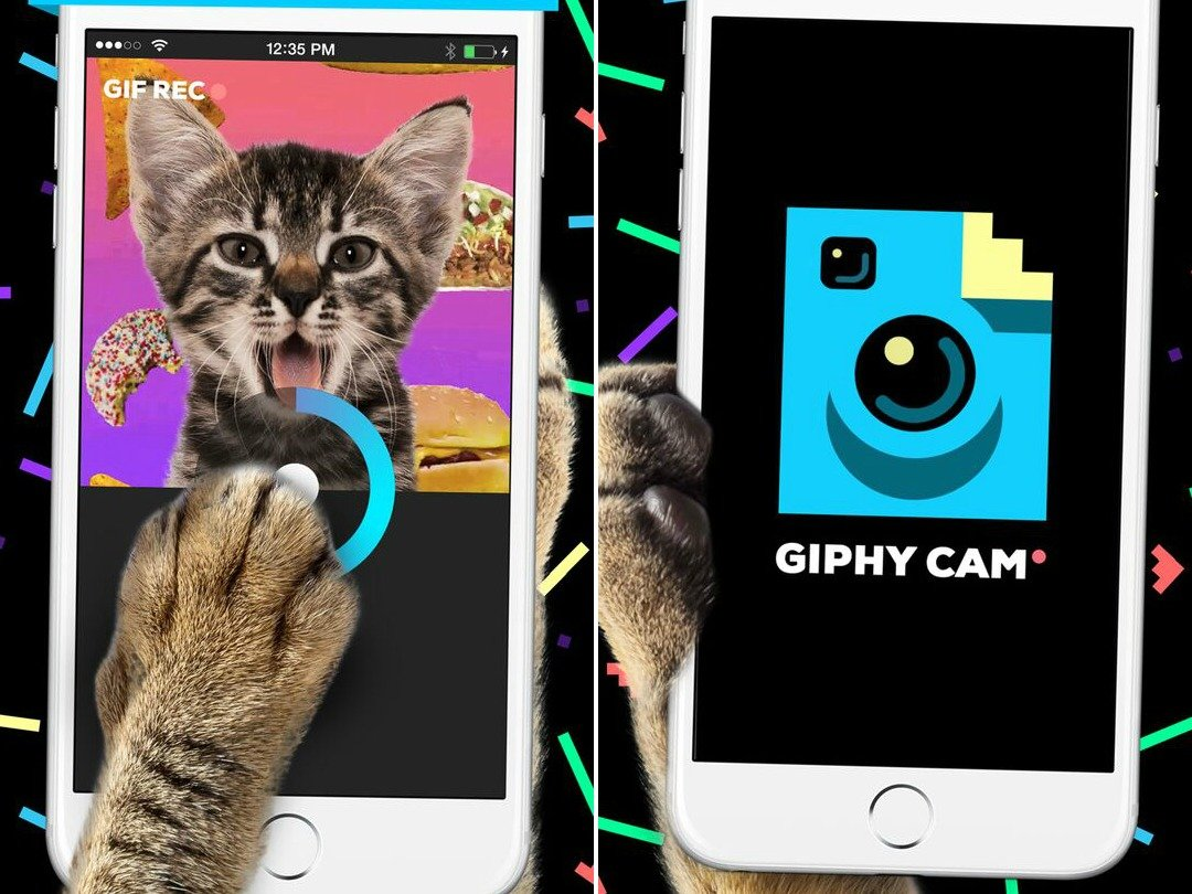 no-21-giphy-cam