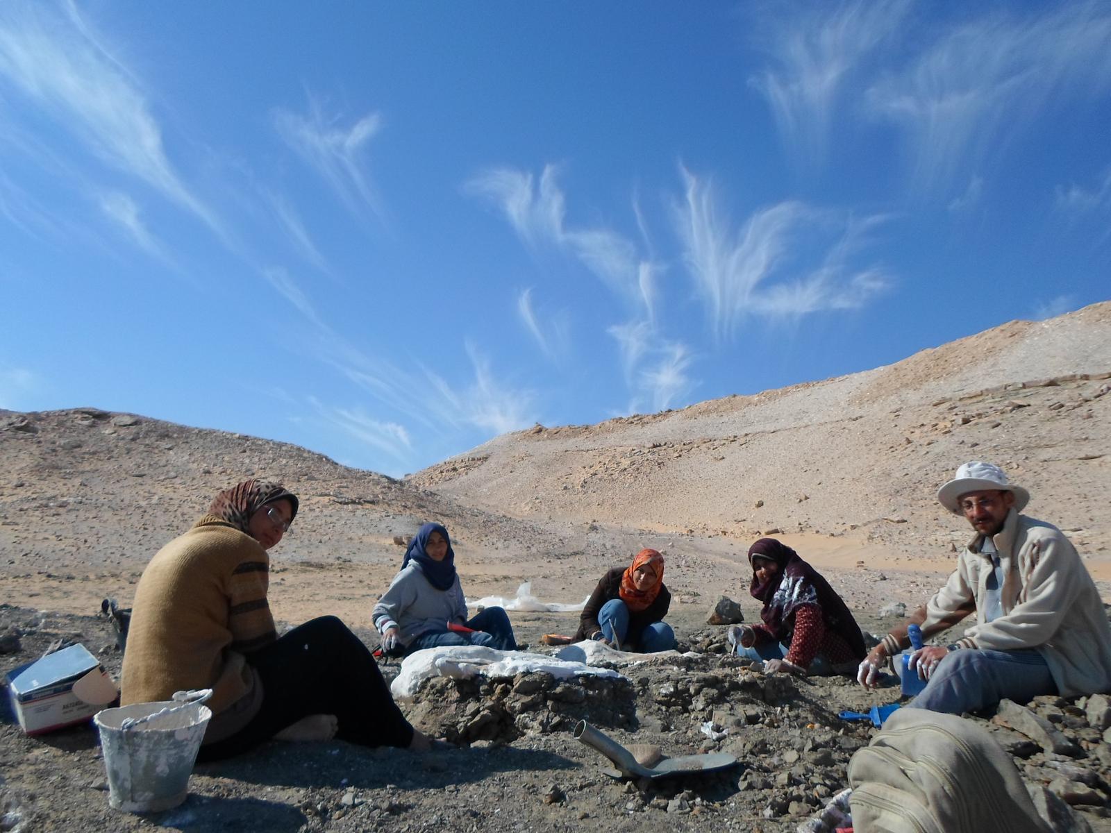 فريق اكتشاف الديناصور المصري