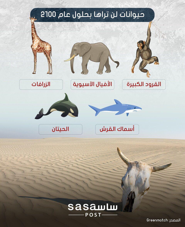 حيوانات ستنقرض